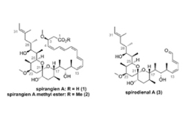 Syrris Asia helps to accelerate spirocyclic polyketide synthesis