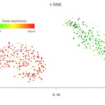 Dolomite Bio releases new Drop-seq datasets showing high gene capture and cost-effective single cell RNA sequencing